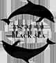 ბლექ სი/ Black Sea სპორტულ-გამაჯანსაღებელი კომპლექსი