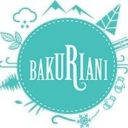 Bakuriani Guest House